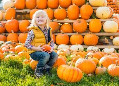 Portrait of happy child sitting on pumpkin